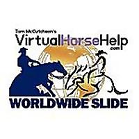 Virtual Horse Help