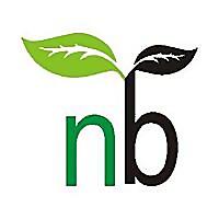 NatureBring | House plants