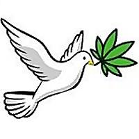 Free the Tree | Marijuana Indoor Growing