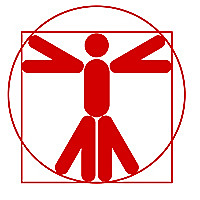 Bodyweight Gurus Calisthenics strength and power workshops