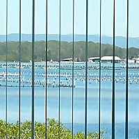 Montgomery Realtors | Louisville Apartment Guide Blog