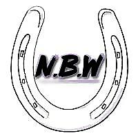 No Bucking Way   Young Horses, Helpful Horse Tips & Tricks