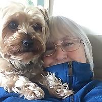 Tessa Barrie's Lost Blogs