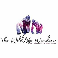 The WildLife Wanderer - Inspiring you to volunteer with animals