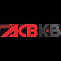 ACB Kickboxing | Youtube