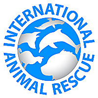 International Animal Rescue | Saving animals from suffering around the world