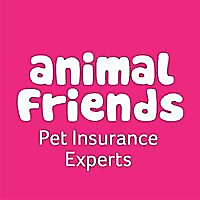 Animal Friends | Pet Insurance for Cats & Dogs