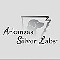 Arkansas Silver Labs