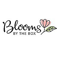 BloomsByTheBox.com | Budget Friendly Beauty