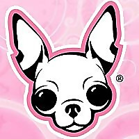 Famous Chihuahua | Chihuahua Dog Breed Facts & Pictures
