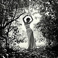 Dreamlife Photo & Cinema   Australia's Top Wedding Photographers