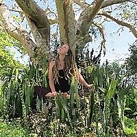 Love Light Yoga | Danielle Hoogenboom
