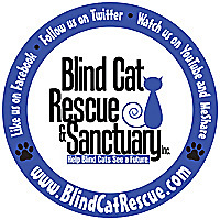 Blind Cat Rescue and Sanctuary!