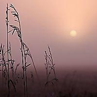 Prairie Sky Book Reviews | Books on Christianity