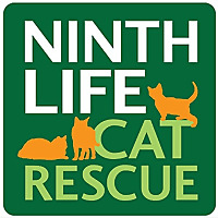 Ninth Life Cat Rescue