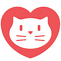 Love Meow | Rescue