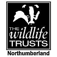 Northumberland Wildlife Trust blogs