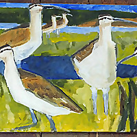 art, birds, nature | Prints and Art from Nature
