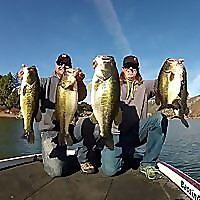 Tactical Bassin - Bass Fishing Blog