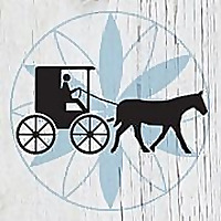 Amish Solutions - Amish Ideas