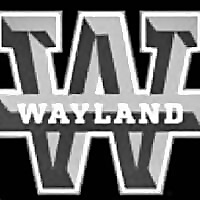 Wayland Baptist University » Women Wrestling