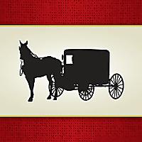 AmishReaders