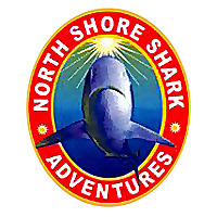 North Shore Shark Adventures Blog