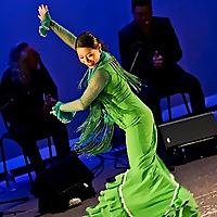 Mozaico Flamenco Blog | Celebrate Yourself, Dance Flamenco