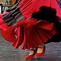 Flamenco de la Isla Society