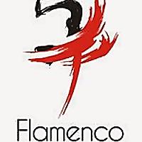 Flamenco Pour Tous