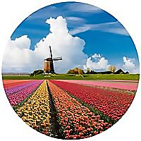 Heavenly Holland | It's all about the Netherlands