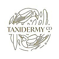 Taxidermy Co. UK