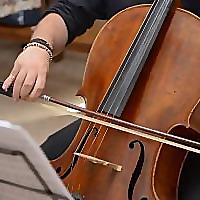 Mid-Life Cello