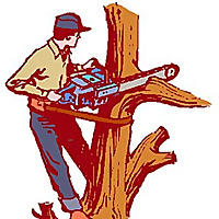 CTL Services | Tree Removal Blog, Tree Cutting Tips