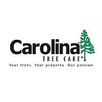 Carolina Tree | News & Blogs