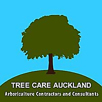 Tree Care Auckland Blog