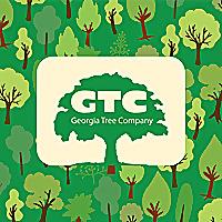 Georgia Tree Company Alpharetta   Tree Removal Service