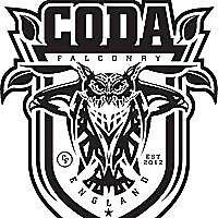 Coda Falconry Blog