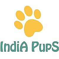 India Pups | Pet Care and Love Blog