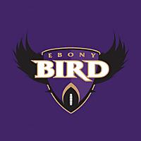 Ebony Bird | A Baltimore Ravens Fan Site