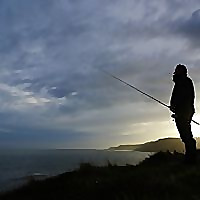 South Devon Bass Guide