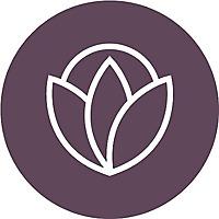Cincinnati Mom Collective | Resource For Cincinnati Moms