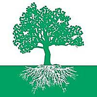 For The Love Of Trees | Arborist Blog | NW Treebune