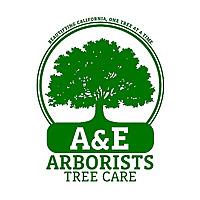 A&E Arborists Tree Care - An Arborist Adventure Blog