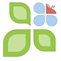 CSK Landscape Services | Arborist Services | Professional Tree Solutions