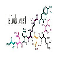 The Doula Element Blog