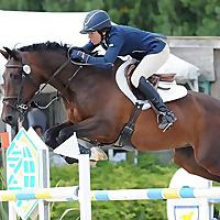 Sarah Lewis Show Jumping   News/Blog