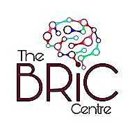 The BRiC Centre | Panning for Gold