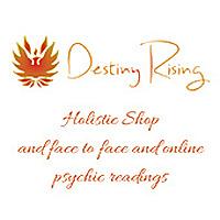 Destiny Rising Blog