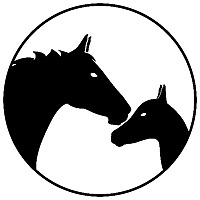 Horses & Foals   A Horse Blog by Equine Enthusiasts